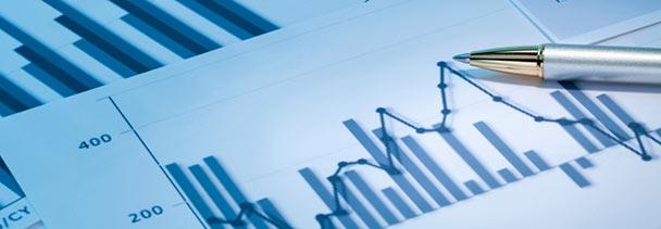 经济规划与政策:宏观会计和分析