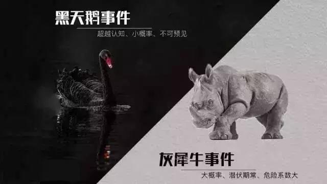 债务风险:要灰犀牛还是魔鬼?