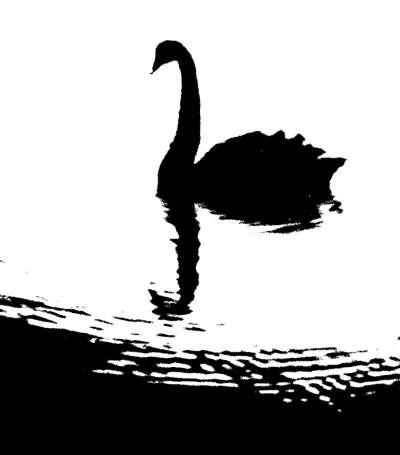 """外资机构预警 明年全球市场或有这些""""黑天鹅"""""""