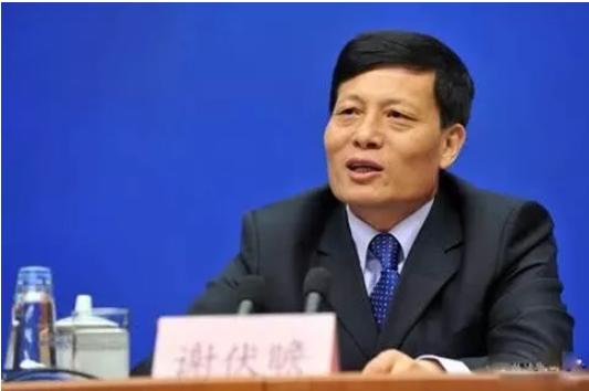 谢伏瞻:中国经济学的理论创新——政府与市场关系的视角