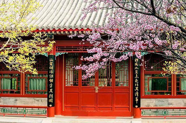 北京大学国家发展研究院 招聘全职博士后