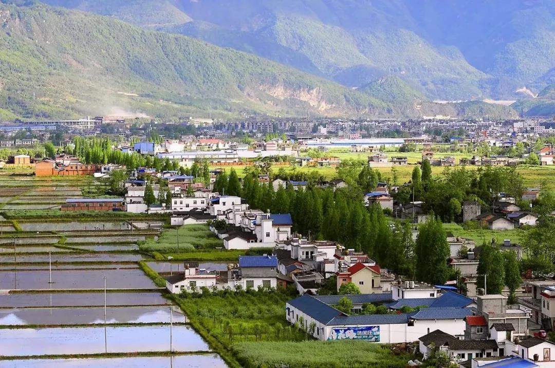 """""""城""""与""""乡""""的选择,决定中国现代化向何处去"""