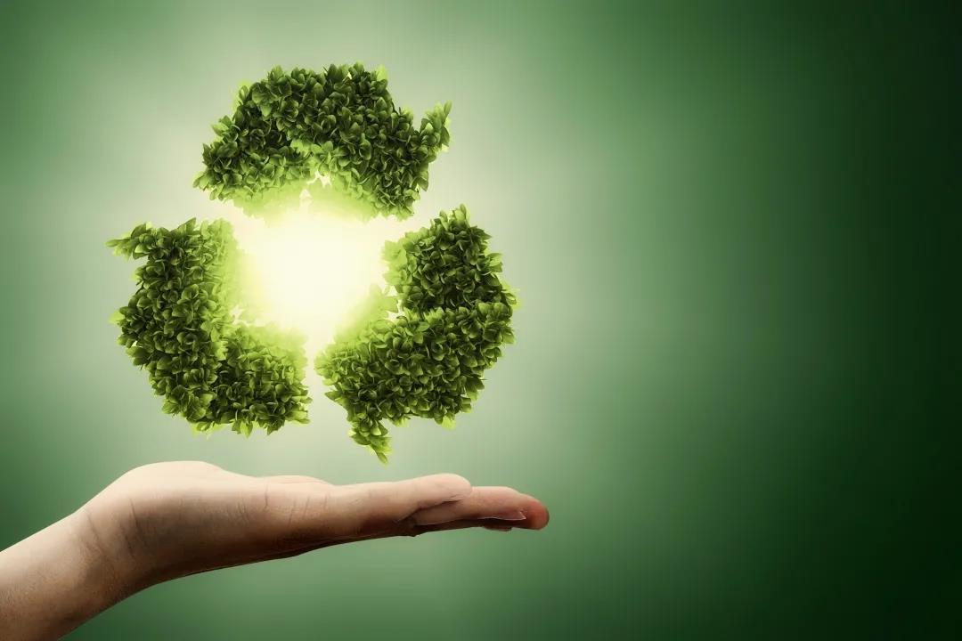 碳中和,中国须有投资大战略