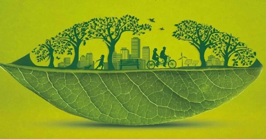 新一轮支持政策加码 绿色金融空间加速拓展